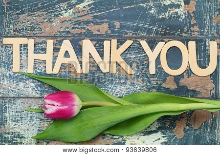 Thank you written with wooden letters and pink tulip
