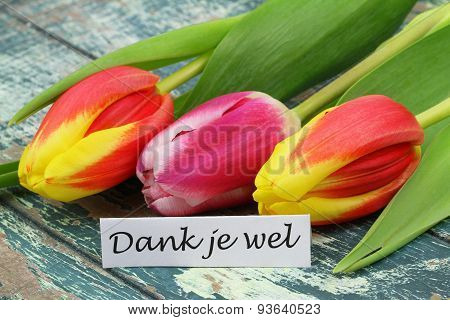 Dank je wel (which means thank you in Dutch) card with colorful tulips