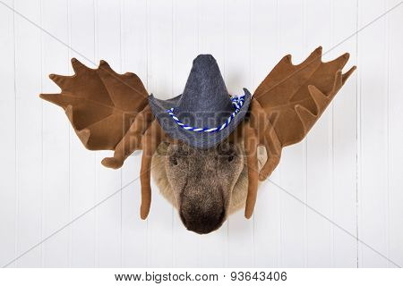 Elk head with antlers and a white felt bavarian hat with blue white ribbon hanging on a white wall.