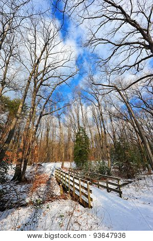 Snow Covered Wooden Bridge Over Stream In Maryland