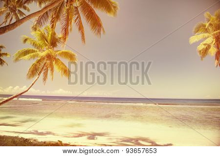 Summer Beach Tropical Peaceful Sunset Concept