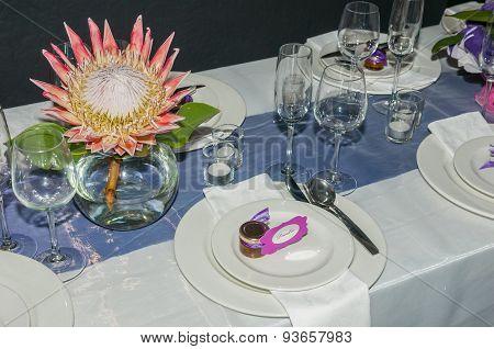 Single Protea Flower Display