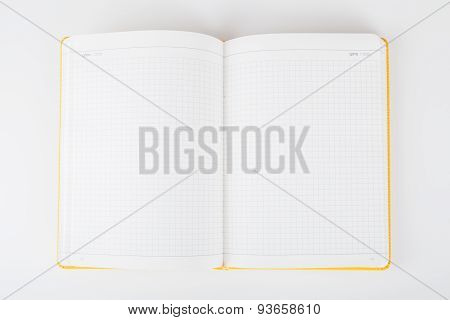 Torn blank lined notebook pages