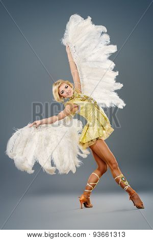 Attractive female dancer posing at studio in a beautiful costume with wings. Ballet dancer. Show-ballet. Carnival.