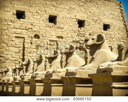 Sphinxes Avenue At Karnak Temple (luxor, Egypt)