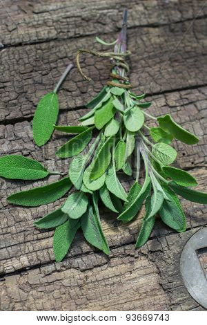 A bunch of fresh sage on an old wooden table
