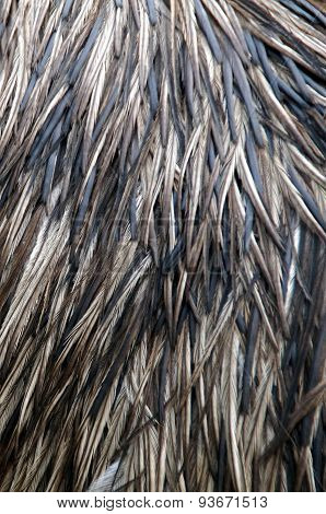 Porcupine body with spines - background - vertical