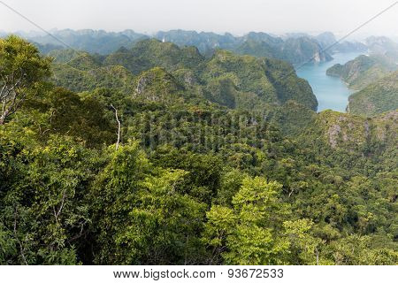 Halong bay archipelago top view from Cat Ba island, Vietnam