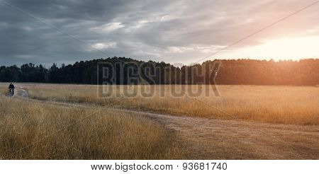 Field, Clouds And Rain