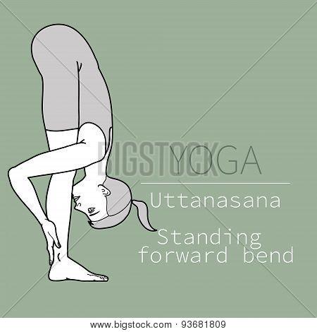 uttanasana, Standing forward bend,