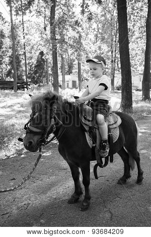 Little boy riding on a pony,