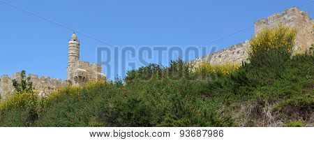 Tower Of David And The Old City Of Jerusalem Walls
