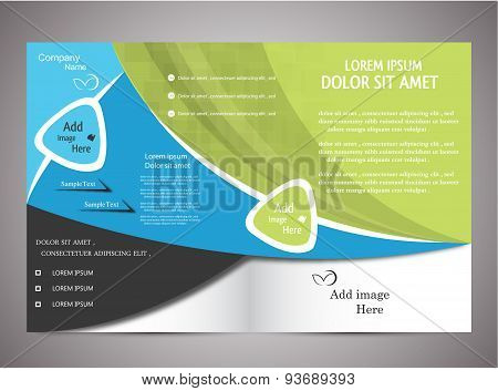 Di Fold Business Brochure