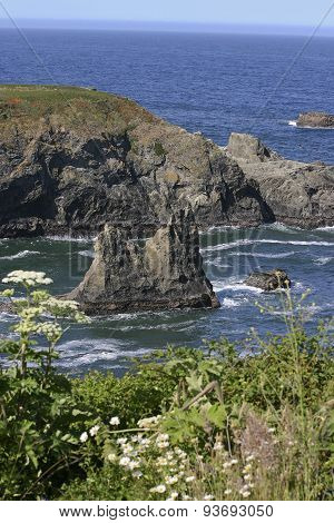Volcanic Boulders In A Blue Sea With Wildflowers