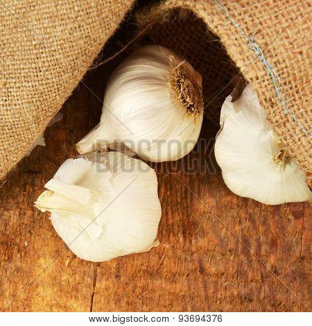 Ripe Garlic