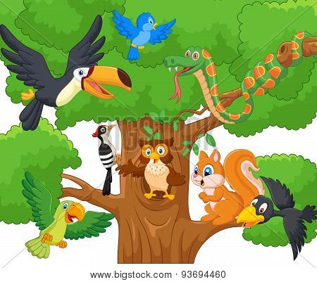 Cartoon collection animal on the trees