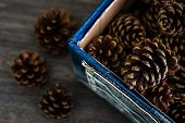 stock photo of pine cone  - Dry pine cones in denim box on brown wooden table - JPG