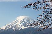 image of mount fuji  - Mount Fuji and sakura not blossom at Kawaguchiko lake side - JPG
