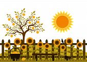 picture of bird fence  - vector apple tree and picket fence with sunflowers - JPG