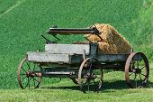 stock photo of hay bale  - Old horse - JPG