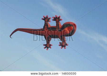 Lizard Kite