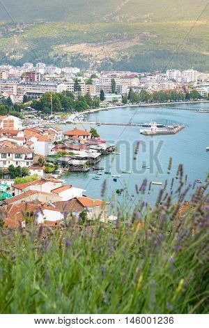 Ohrid Town In Macedonia Cityscape With Lavender Flowers