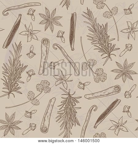 Vector seamless texture with Herbs and Spices. Natural spices. Compilation of vector sketches. Kitchen herbs and spice. Vintage style. Hand drawn.