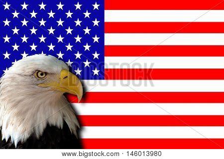 Flag of United States of America (USA)