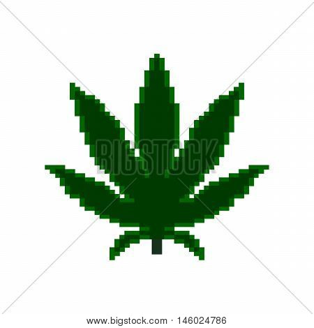 Pixel icon. Pixel marihuana on the white background.