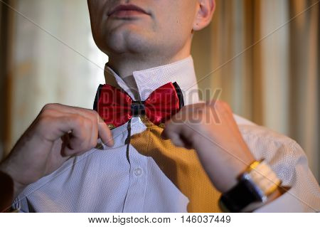 Gguy ties a red butterfly tie on the neck. Fashionable gentleman getting dressed. Dressing men at a festive reception.