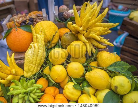 Mix of citrus fruits - Pile of different citrus fruits from oranges lemons mandarins and the strange shaped fingered citron (citrus medica scientific called). Picture taken at a market in Paris France