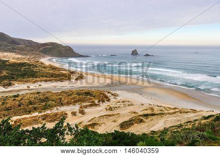 View Of Sandfly Bay In Otago Peninsula, New Zealand
