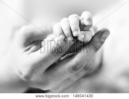 Baby holding the mothers hand, trust theme. Black and white toned image with holding hands of a newborn baby and it's parent.
