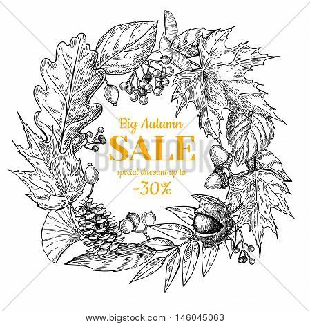 Autumn sale wreath vector banner with leaves and berry. Hand drawn fall illustration with frame and botanical elements. Great for poster banner voucher offer coupon business promote.
