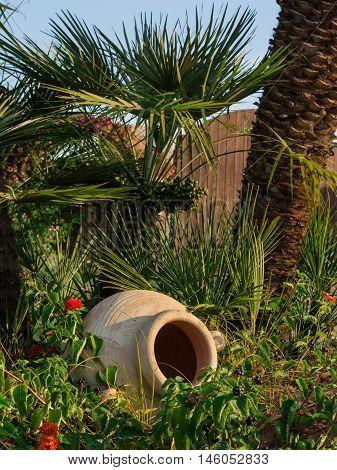 Green Palm Plants Vegetation And Ornamental White Vase