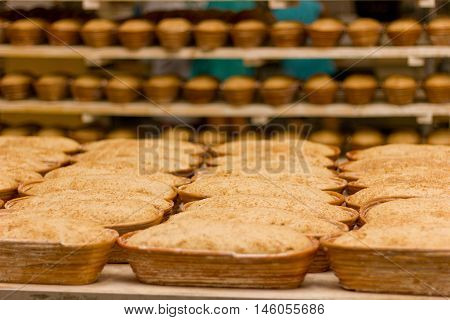 Proving dough of bran in basket. Private Bakery. Production of bread. Workshop of making bread.