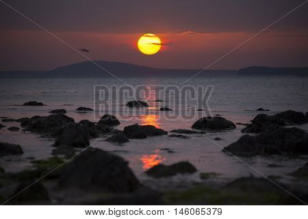 sea gulls flying near ballybunion on the wild atlantic way ireland with a beautiful red sunset
