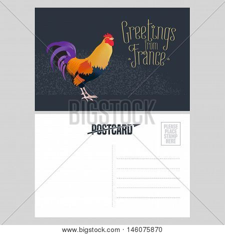 France vector postcard design with French symbol rooster. Template illustration element nonstandard mail postcard with copyspace stamp and Greetings from France sign