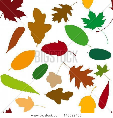 Pattern background with many autumn leaves in different colorful colors