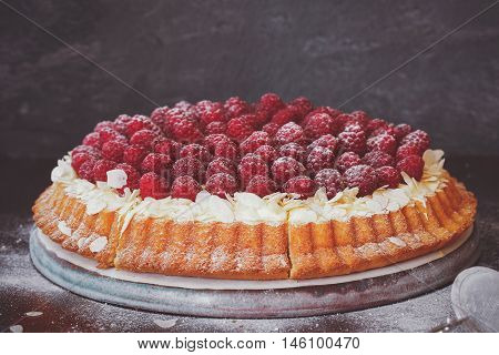 Raspberry tart with vanilla cream and icing sugar. Macro, selective focus, vintage toned image, blank space
