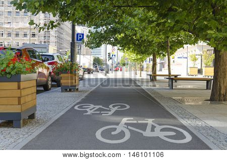 Bicycle lane under the trees on city street. Perfect cycling infrastructure in the city.