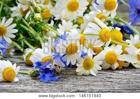 A Bouquet Of Daisies And Cornflowers On Wooden Table. Postcard Of Wild Flowers.