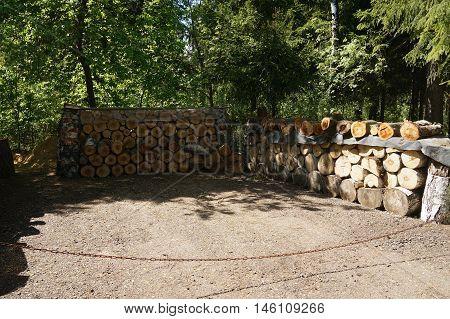 firewood, forest, lumber, log, cut, biomass, trees, logs, cutting, background