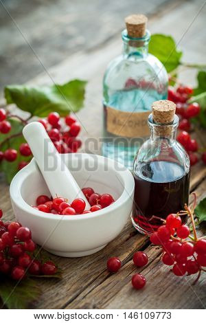 Bottle Of Guelder Rose (red Viburnum) Tincture And Mortar Of Red Healthy Berries, Herbal Medicine. S