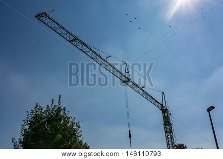 Small White Crane Frame Blue Sky Daylight Construction Industry