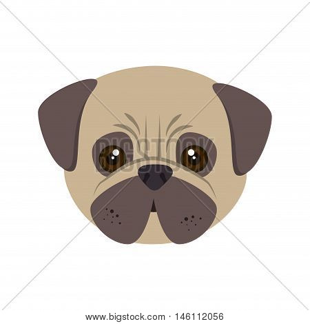 pug breed dog canine pet animal. puppy cartoon. vector illustration