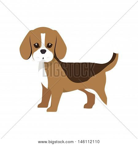 beagle breed dog canine pet animal. puppy cartoon. vector illustration