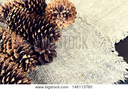 Pine And Spruce Cones On Sackcloth. Located On The Left In The Frame