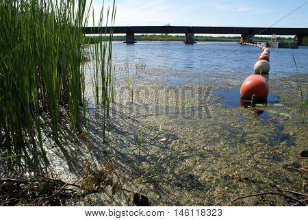 A landscape image of a train bridge over some water.