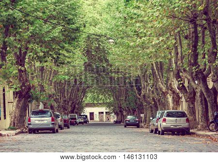 COLONIA DEL SACRAMENTO, URUGUAY - MAY 04, 2016: nice street with some big trees on the sidewalks and some parks parked under them.